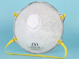 SAFETY RESPIRATOR (FP SERIES)